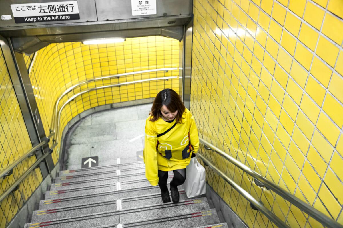 A chameleon-like Tokyo commuter