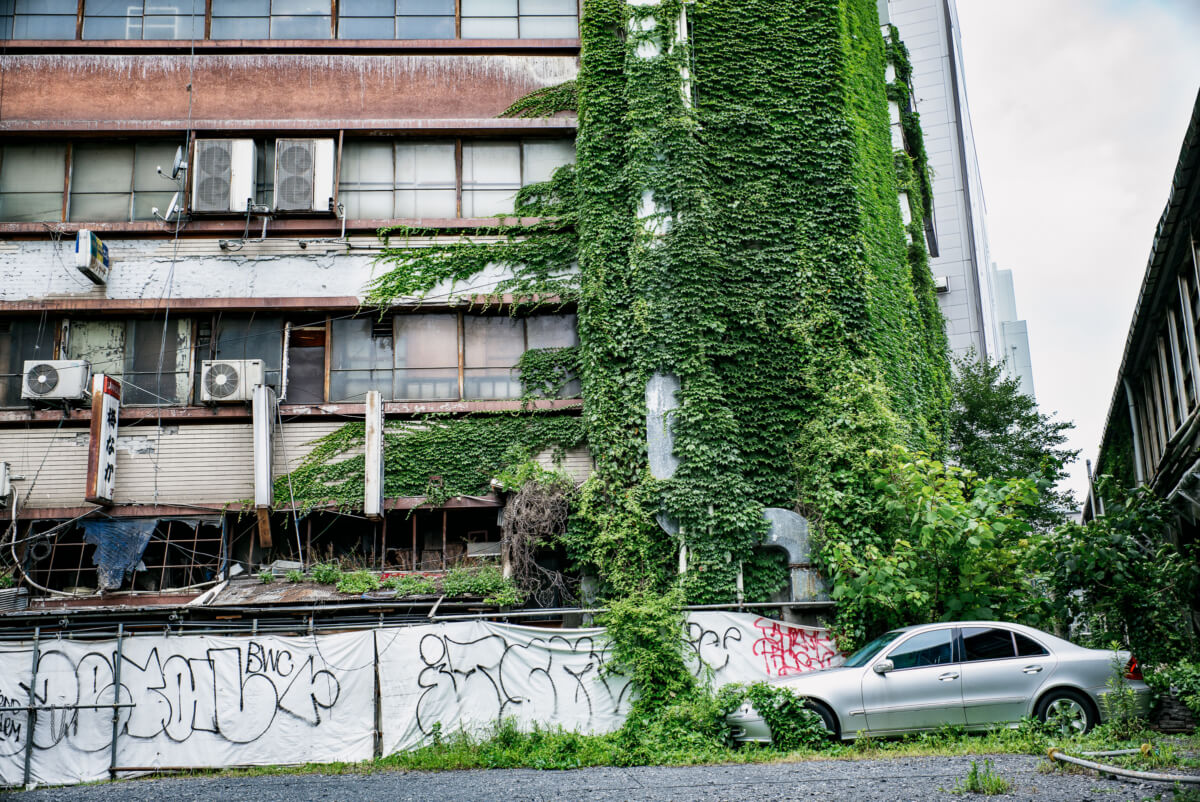 crumbling and overgrown Tokyo