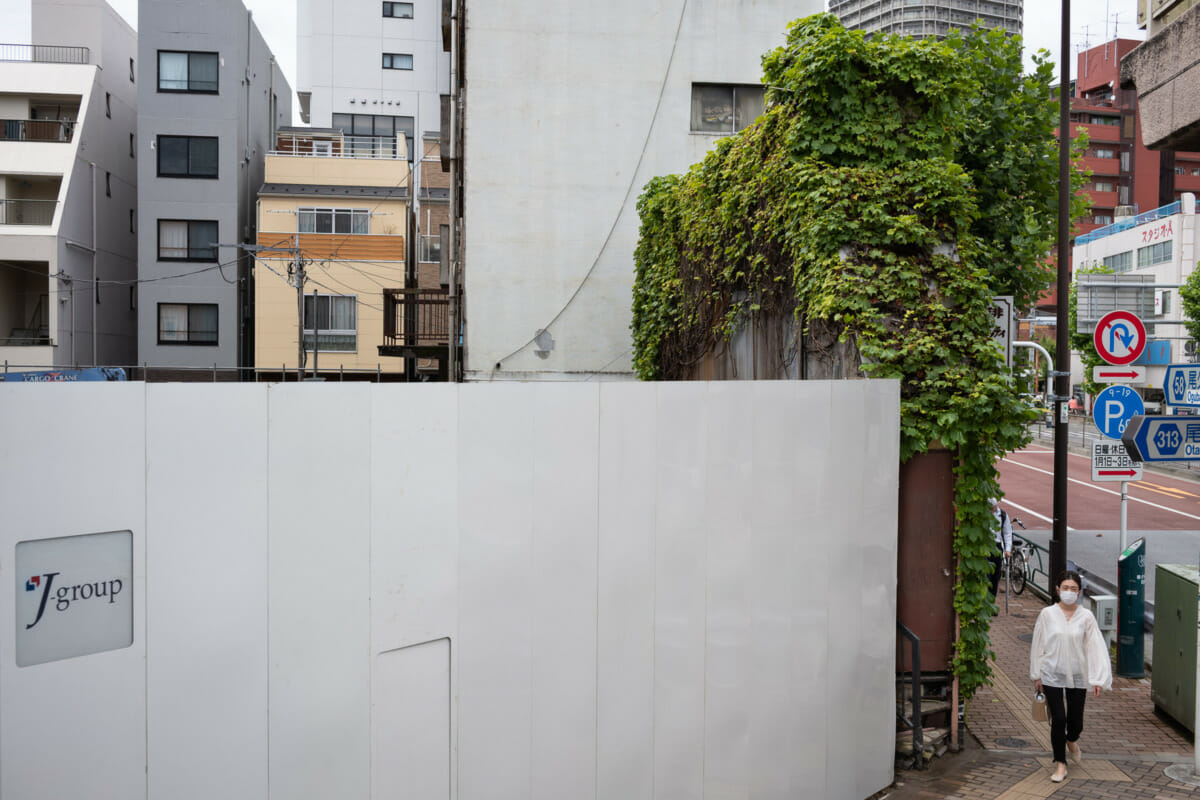narrow and overgrown old Tokyo restaurant