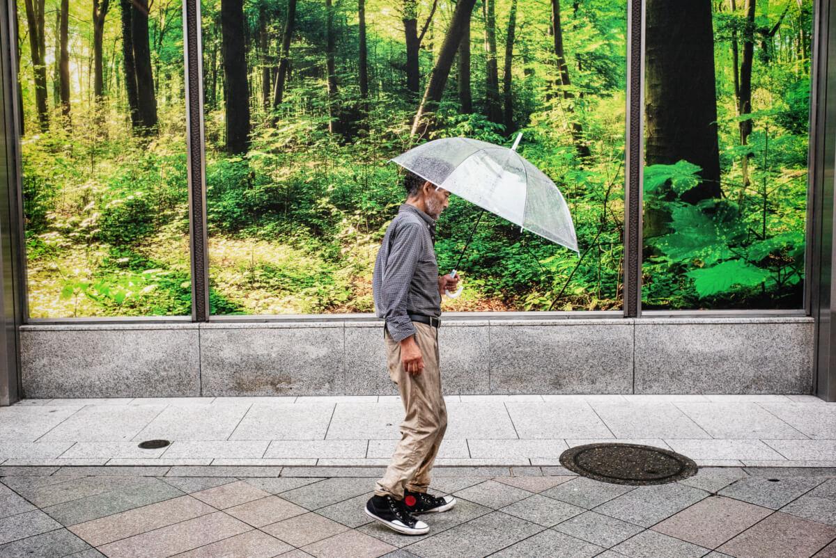 tokyo forrest facade