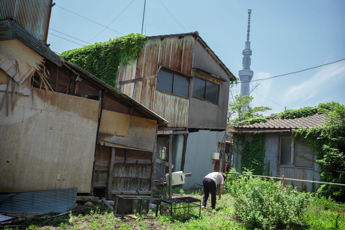 Tokyo Skytree contrast