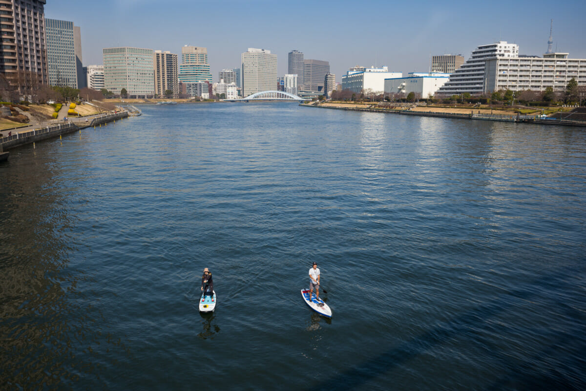 Japanese paddleboarders in Tokyo