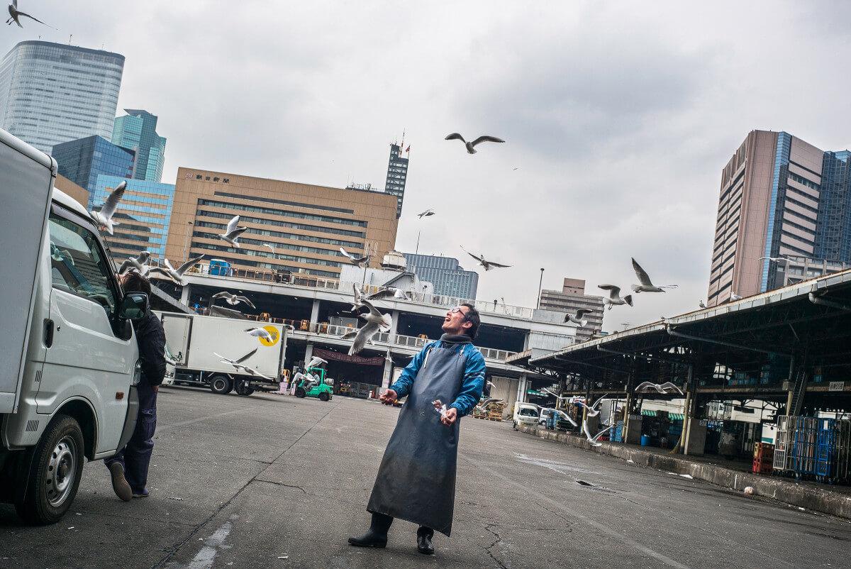 Tsukiji fish market joy feeding the birds