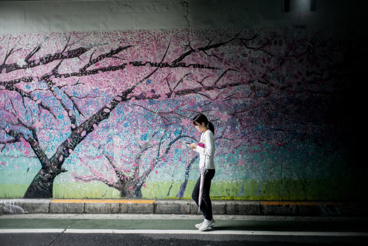 urban cherry blossom art in Tokyo